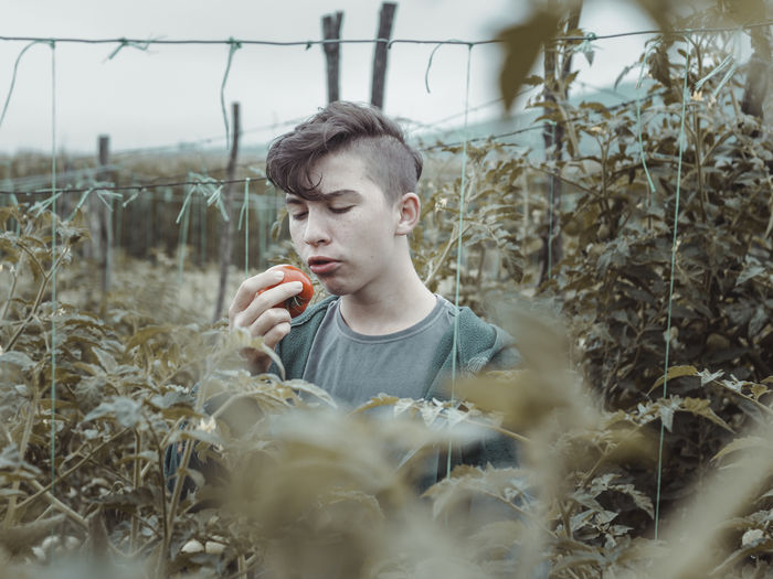 Thoughtful Teenage Boy Holding Tomato Amidst Plants In Farm