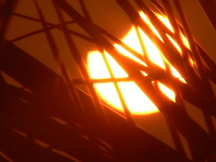 Close-up Grass Silhouette Nature No People Partial Solar Eclipse Silhouette Solar Sunset