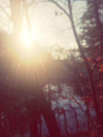 Last Sun December Christmas Is Over