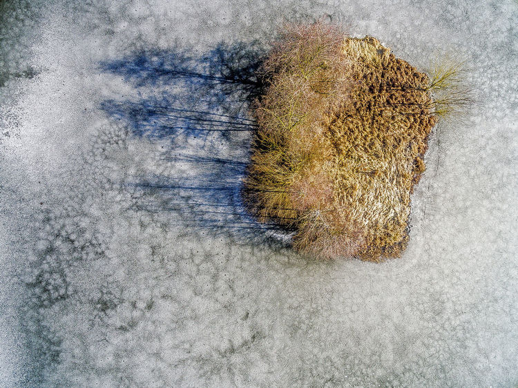 Small island in winter on an icebound lake with beginning thaw Aerial Shot Drone  High Ice Abstract Aerial Aerial View Animal Themes Beauty In Nature Close-up Day Drone Photography Droneshot Growth Indoors  Island Nature No People Sky Thaw Thawing EyeEmNewHere