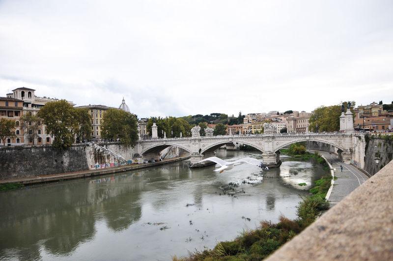 Roma Built
