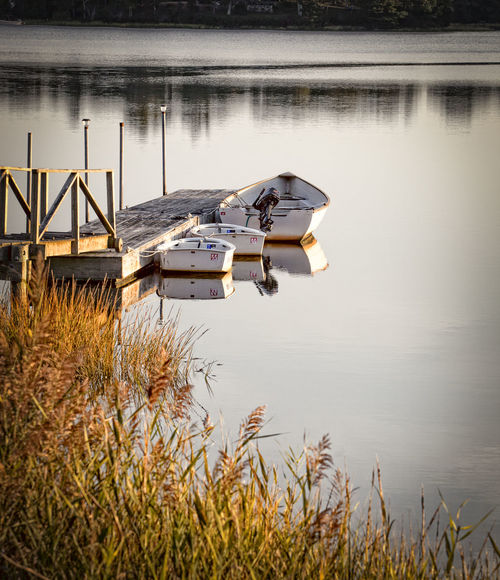 Buzzards Bay Backwater Autumn Beauty In Nature Boat Fall Grass Lake Lake View Motorboat Nautical Vessel No People Outdoors Reed - Grass Family Reflection Rowboat Scenics Sky Tranquil Scene Tranquility Tree Water Fresh On Eyeem