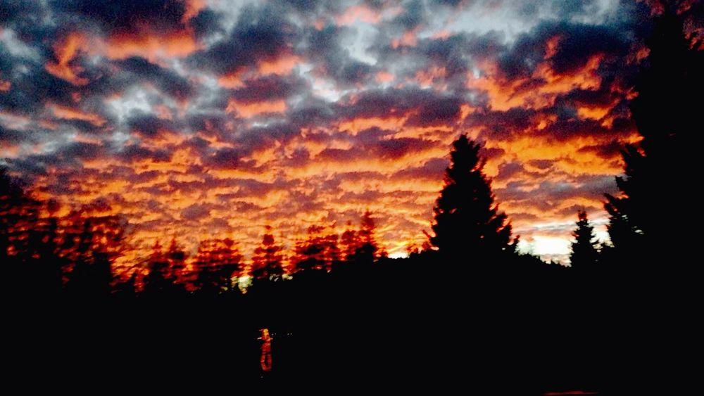 Le soleil se couche sur la montagne, dessinant des nuages enflammés dans les cieux. Sundown Mountain Arbre Feu Fire First Eyeem Photo