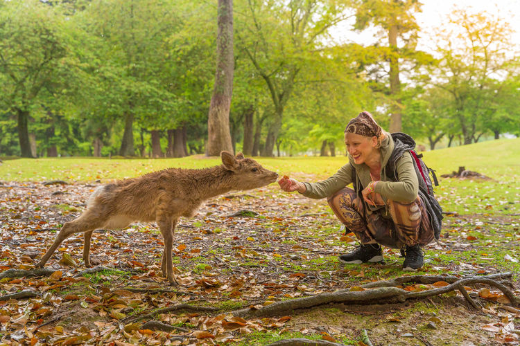 Woman with deer on field in park