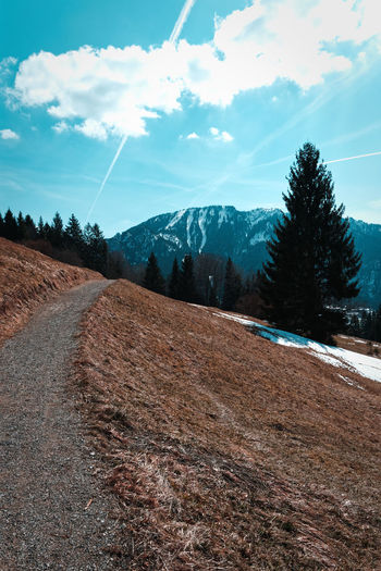 Path on a mountain Tree Nature Snow No People Landscape Landschaft Mountain Mountains Valley Wanderlust Travel Path Way Woods Moody Retro Stockphoto Horizon Over Water Spring Winter Bavaria Alps Bayern Berge Alpen