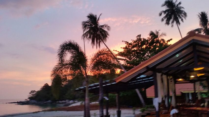 Monochrome Photography Palm Tree Orange Color Cloud - Sky Tranquil Scene Outdoors Vacations Beauty In Nature Dramatic Sky Tree Sunset Water Sky Palm Tree Tree Sunset Built Structure Architecture Sky Building Exterior Growth Water Orange Color Scenics Cloud - Sky