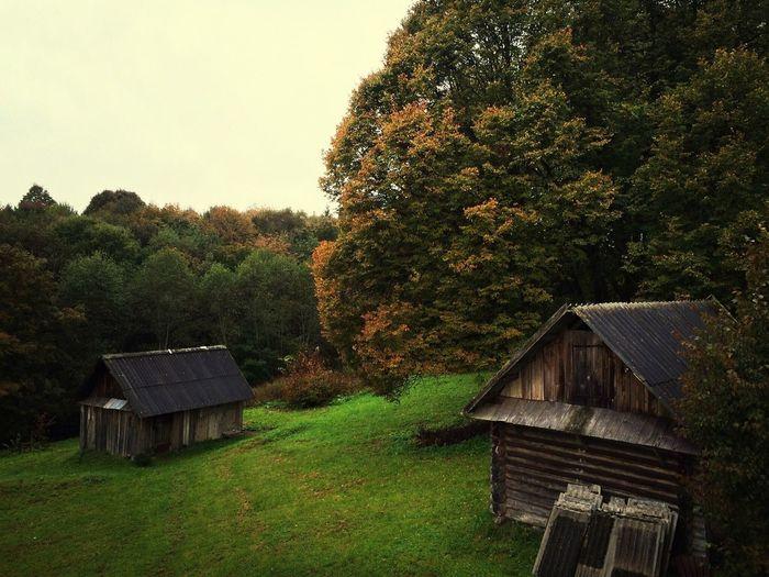 Деревня Рудня.