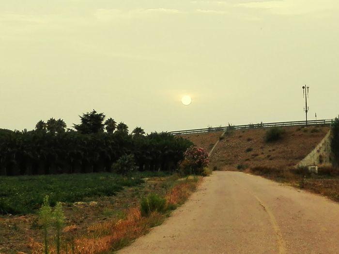 sol o luna? Calima Cielo Raro Extremadura Nature Photography Road Moon Moonlight Verano Calor Sunset Sun Tree Road Sky Empty Road Country Road Scenics Tranquil Scene Silhouette White Line Double Yellow Line