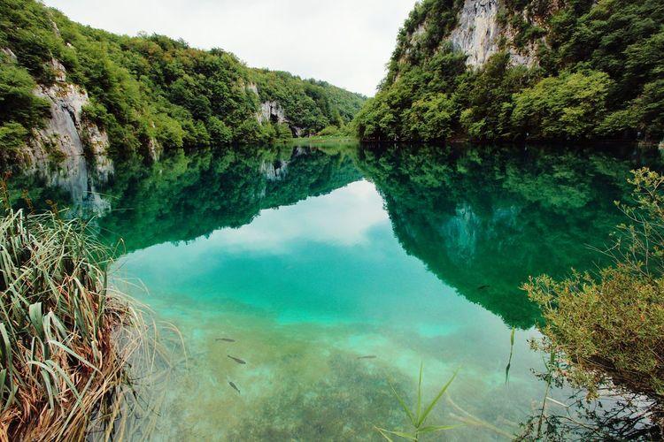 Plitvice National Park Nature_collection Naturelovers Plitvickajezera Croatia
