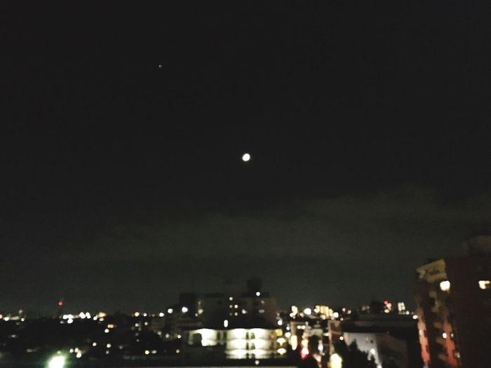 Moon 江東区 深川