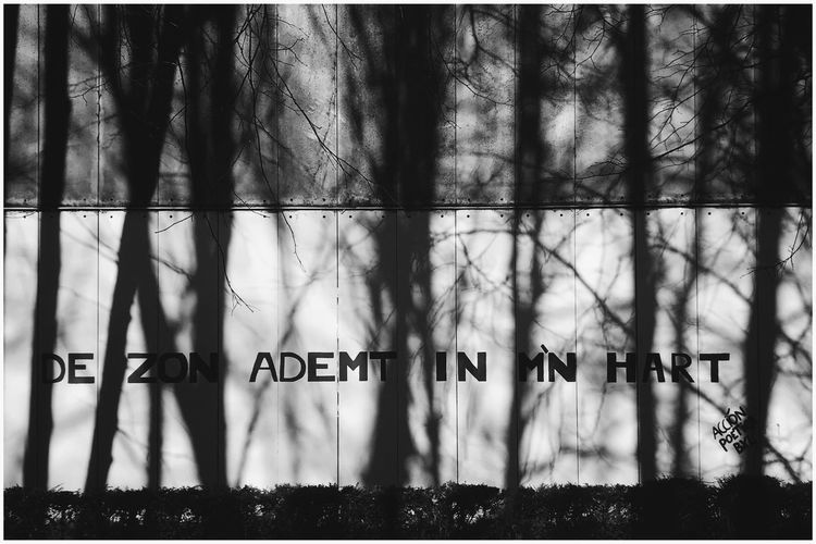 Usefull graffiti, roughly translated: 'the Sun breathes in my heart.' Kris Demey Photography Black And White Text Communication Day No People Outdoors Close-up