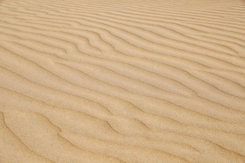 A background photo of the desert sand textures Backgrounds Full Frame Pattern Textured  Natural Pattern Wave Pattern No People Sand Brown Wood Close-up Land Nature Climate Arid Climate High Angle View Beauty In Nature Desert Surface Level Earth Tones Brown Tones Sand Patterns Brown Background Nature Backgrounds Nature Background