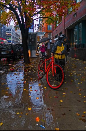 Wet Stuff #28, Rain Today - 11/29/16 Bike Messenger EyeEm StreetPhotography, NYC Fall Tree W/ Foliage Fresh On Market November 2016 Outdoors Reflection_collection The Journey Is The Destination