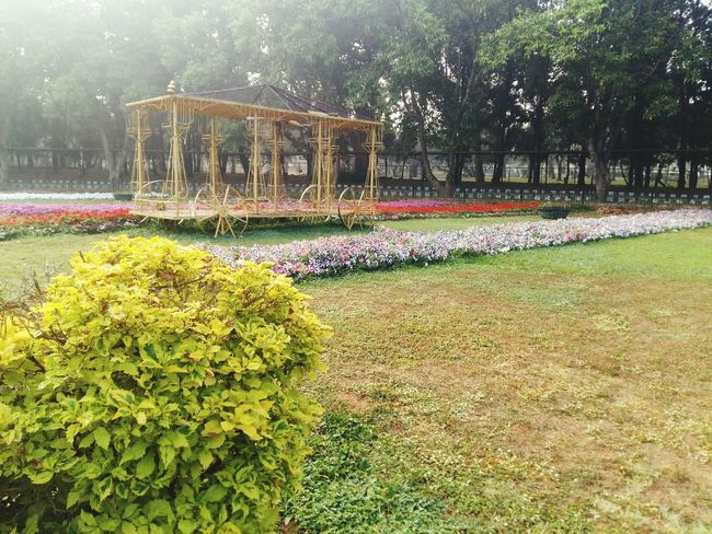 Lalbaghgarden Lalbagh Garden Naturecolors Park