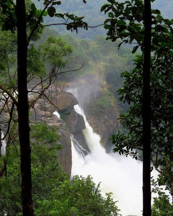 Athirappilly Falls, Athirappilly Kerela Incredibleindia Incredibleindiaofficial Travel Nature Landscape Waterfall Photoarena_nature Beautifuldestinations Ourplanetdaily Nature_brilliance Canonsx50 Canon_photos Canon_official Isupporttravel