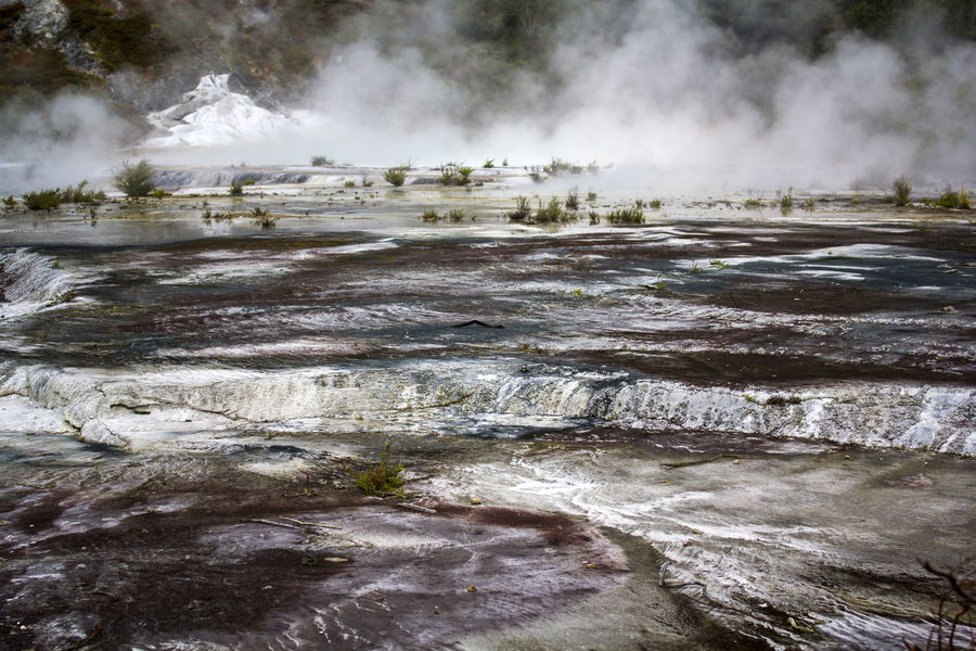 Geothermal activity, terrace and steam rising. Orakei Korako park, New Zealand Impressive Mother Nature Steam Travel Wanderlust Beauty In Nature Boiling Water Earthquake Energy Geological Formation Geology Geothermal  Geothermal Activity Heat - Temperature Hidden Valley Hot Pools Hot Spring Nature New Zealand Physical Geography Power Power In Nature Scenics - Nature Steam Volcanic