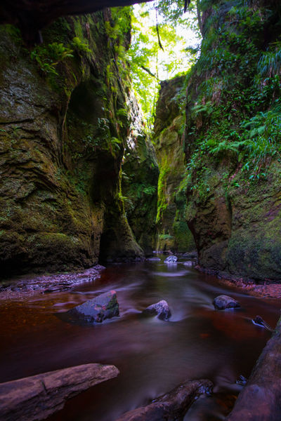 The Devils Pulpit, Scotland Green Red River Scotland Can Devils Pulpit Finnich Glen Long Exposure Lush Foliage Shded Stream Vertical