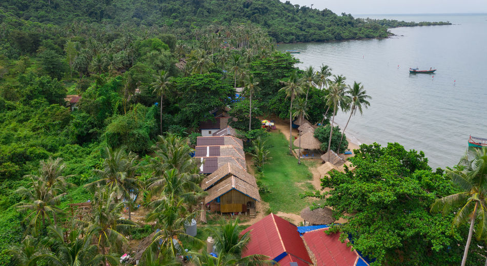 High angle view of trees and buildings by sea
