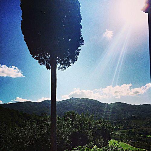 Toscane,