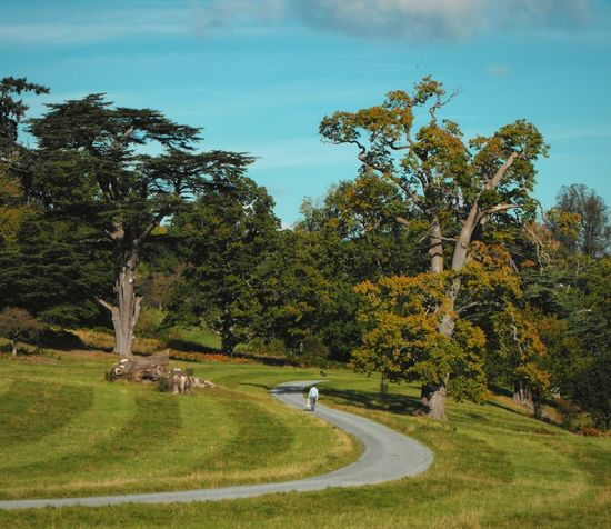 A Park Road ... Welshpool Autumn Trees Fall Landscape Britain Lawn Inviting Road