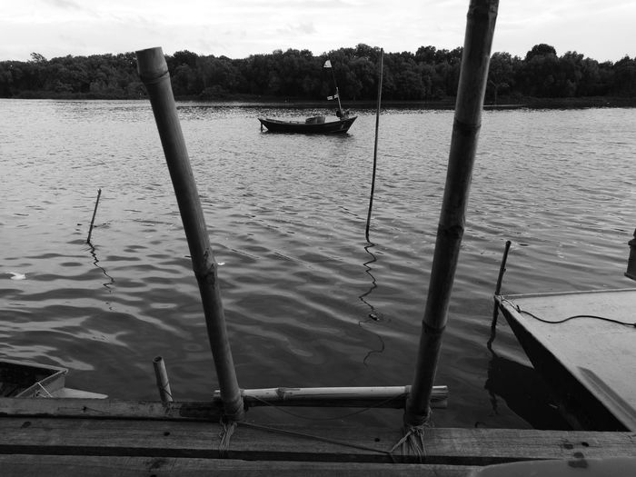 Water Outdoors Day Nature No People Sky Beauty In Nature Tree Blackandwhite EyeEmNewHere Bw Boat Thailand Travel Leisure Activity Waterfront View Mangroves Forest Mangrove Life Bridge Port