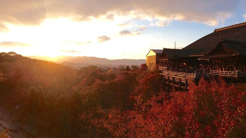 清水寺と京都の日暮れ。 Kyoto Sunset Autumn IPhoneography