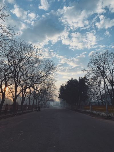 Road amidst bare trees against sky in city