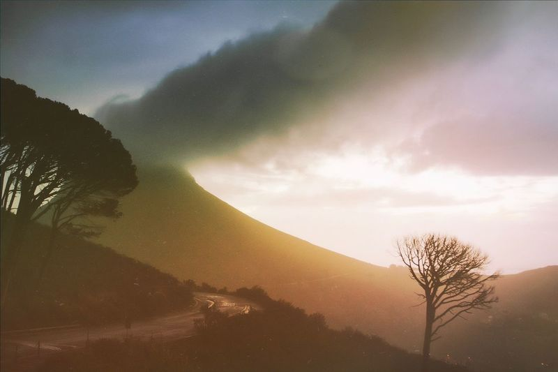 The Table Mountain after the rain. Table Mountain Road Lonely Road EyeEm Best Shots Sky Beauty In Nature Scenics - Nature Tree Plant Tranquil Scene Nature No People Cloud - Sky Landscape Non-urban Scene Outdoors Sunset Sunlight Idyllic Mountain Environment