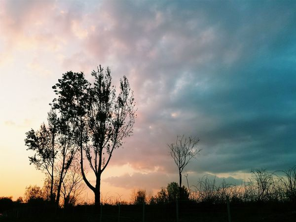 Sunset Tree Sky Cloud - Sky No People Outdoors Beauty In Nature Nature Night Day Silhouette Ontheroad Nature_collection Horizontal Highway Roadtrip The Week On EyeEm EyeEm Best Shots EyeEm Gallery EyeEmBestPics Eye4photography