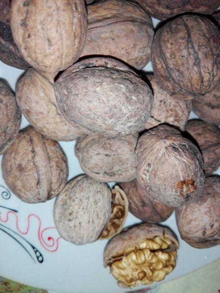 Walnuts Fruits Nuts Walnut Shells Walnut Shell Walnut Heart Walnut Fruit Wolfzuachiv Veronica Ionita WOLFZUACHiV Photography Veronica IONITA Photography Ionita Veronica Ionita Veronica Photography