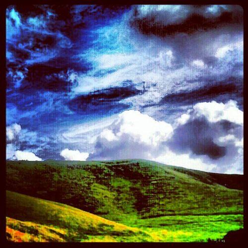'Rolling Hills' Cherill Devizes Wiltshire England cloudlovers Cloudporn Hills Scenery igscout igscotland igtube igaddict Igers skyporn skymob Tagstagram haggismunchers insta_pic_skyart instagood instamob instanaturelover instacanvas instamob picoftheday bestoftheday Primeshots