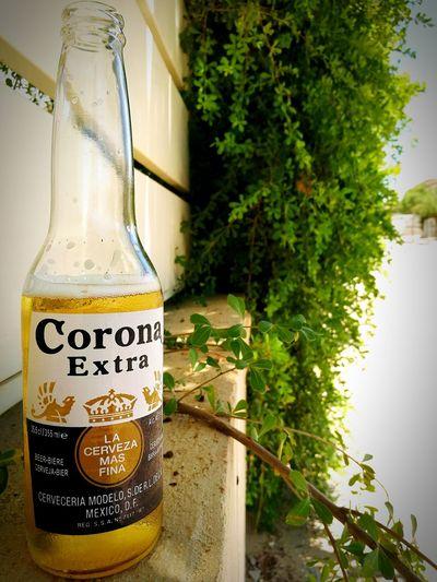 Corona love! Corona Beer Beer Time Beer Lovers Enjoying Life