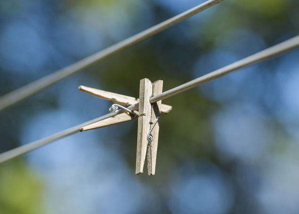 Clothes pegs hang on a washing line Close-up Clothes Peg Clothing Clothing Store Day Domestic Animals Dry Focus On Foreground Hanging Nature No People Outdoors Pegs Wash Wind
