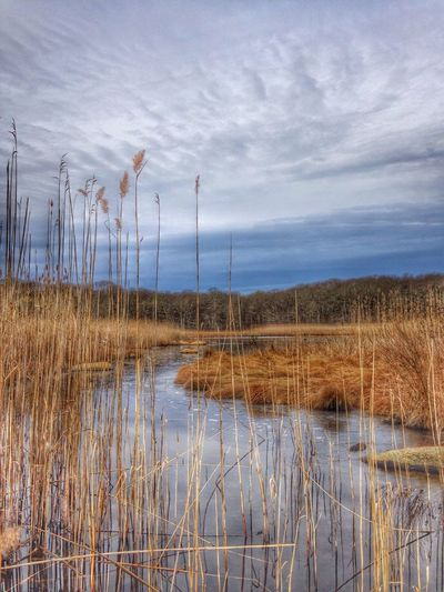 Water_collection Hdr_Collection Nature January EyeEm Nature Lover Walking Around Clouds And Sky On A Hike