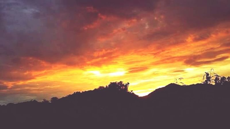 Sunset Nature Dramatic Sky Cloud - Sky Beauty In Nature Tree Landscape Tree Area Silhouette Tranquil Scene No People Scenics Tranquility Sky Night Outdoors Growth Dramatic Sky Healthy Eating Beauty In Nature Sunlight Tree Close-up
