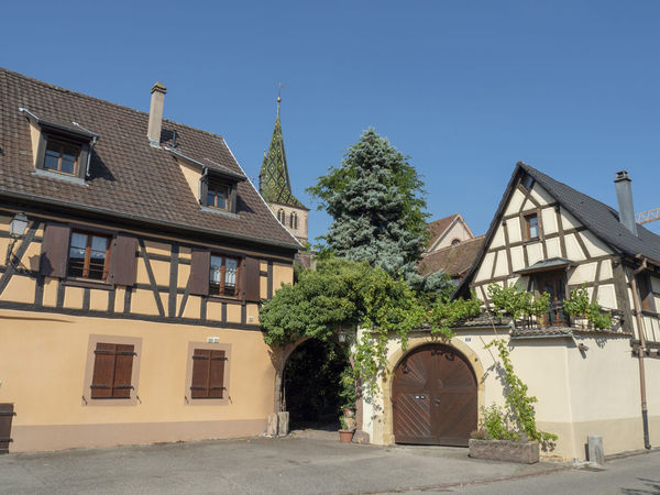 Medieval Town of Turckheim, Alsace Architecture Building Exterior Built Structure Building House Residential District Sky Window Nature Day Clear Sky Blue Tree No People Plant Roof City Sunlight Outdoors Entrance Row House Turckheim MedievalTown Tourism Alsace France