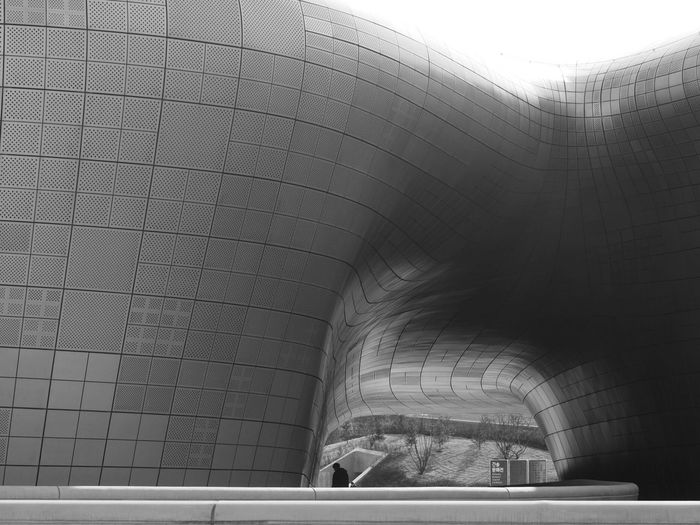 In the shadow of greatness Monochrome Black And White Architecture Street Photography