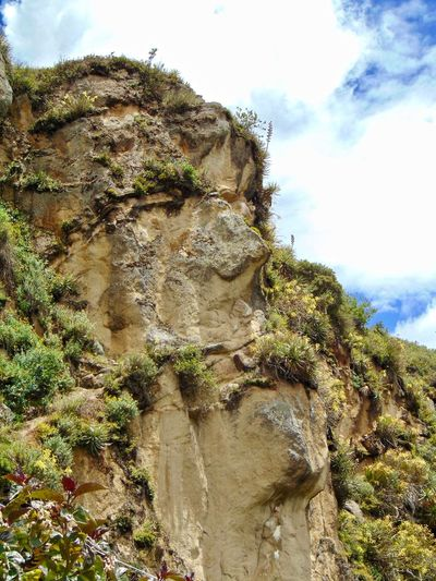 Archaeology Architecture Inca Face Ingapirca Ruins Sierra Beauty In Nature Day Donkey Ingapirca Ecuador Llamas Mountain Nature No People Outdoors Sky Temple Of The Sun