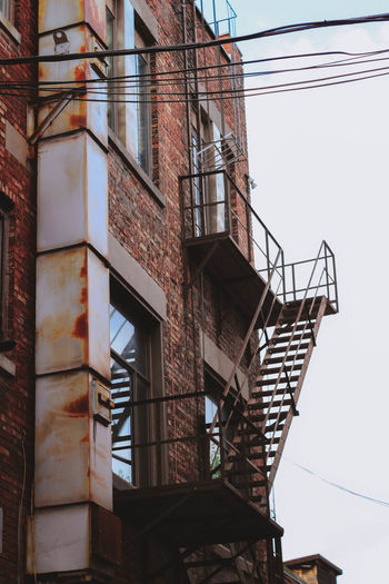 Animals In The Wild Architecture City Cityscape Exterior Plants Tree Animal Wildlife Animals Architecture Building Exterior Built Structure Canada Day Fire Escape Flower Flowers Landscape Low Angle View No People Outdoors Railing Sky Staircase Stairs Steps Steps And Staircases Wildlife