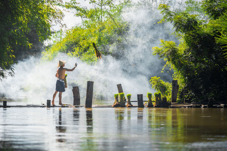 Farmer throwing grass while standing on pier over lake