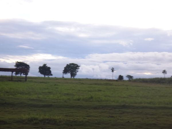 AVARE SP BRAZIL Agriculture Cloud Cloud - Sky Cloudy Distant Field Getting Away From It All Grass Horizon Over Land Landscape Non-urban Scene Outdoors Relaxing Moments Remote Rural Scene Scenics Sky Tranquil Scene Tranquility