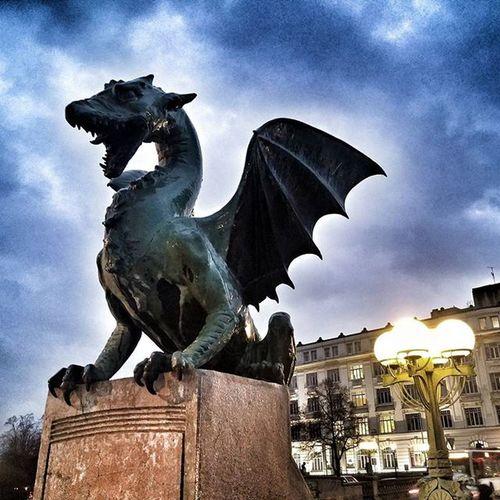Dragon bridge, Ljubljana 🐲 Contiki Ljubljana Dragon
