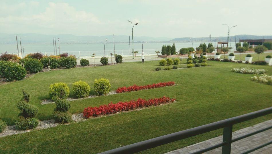 Lake Beautiful View