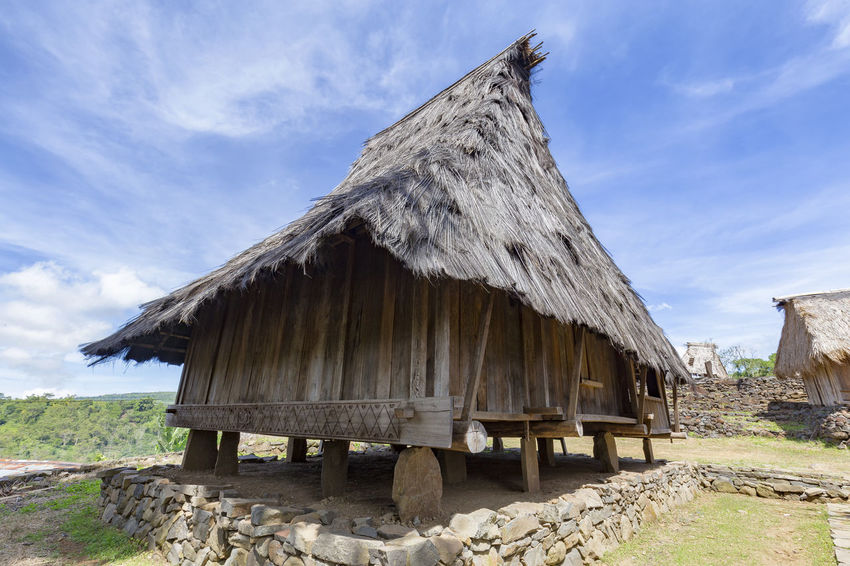 A traditional house in the Wologai village near Kelimutu in East Nusa Tenggara, Indonesia. Coffee Houses INDONESIA Moni Rice Tourist Travel Tree Art Attraction Authentic Culture Destination East Nusa Tenggara Ethnic Hard Wood House Kelimutu Landmark Sculpture Tourism Traditonal Tribe Village Wologai