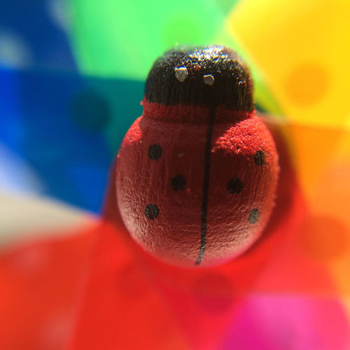 toy ladybirds with rainbow coloured background Close-up Focus On Foreground Ladybird Multi Colored No People Pink Color Red Selective Focus Still Life Toy Toy Ladybird