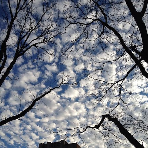 Clouds #nyc NYC