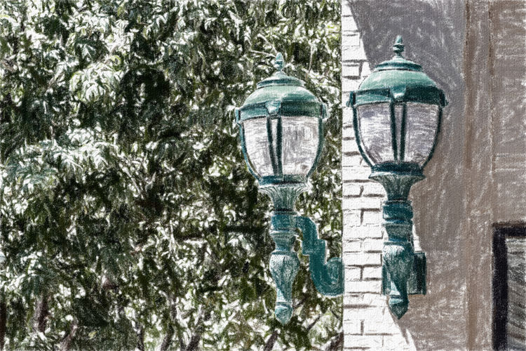 Close-up of street light against trees during winter