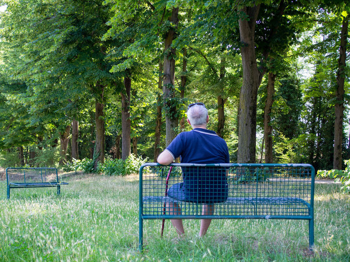 Rear view of man sitting in park