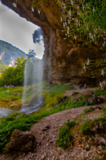 beautiful fontanone di goriuda EyeEm Best Shots EyeEmNewHere Friaul Beauty In Nature Blurred Motion Day Environment Field Flowing Flowing Water Growth Land Motion Mountain Nature No People Non-urban Scene Outdoors Plant Scenics - Nature Tranquil Scene Tranquility Tree Water Waterfall