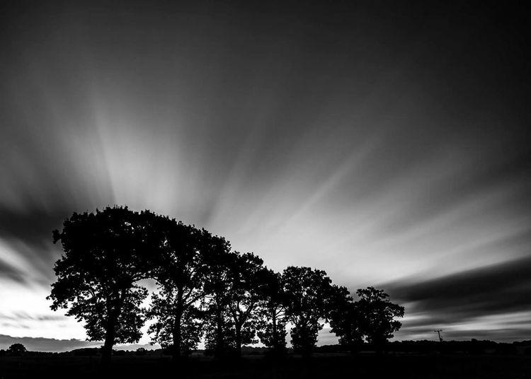 Morning rush Canoneos6d CanonOffical Leefilters BigStopper Long Exposure Trees
